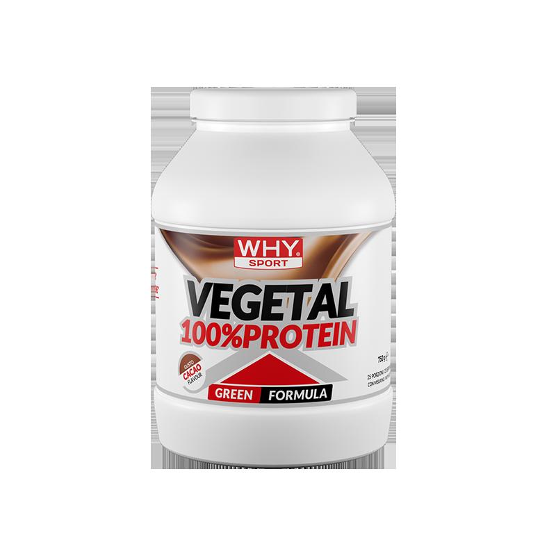 100% VEGETAL PROTEIN 750g